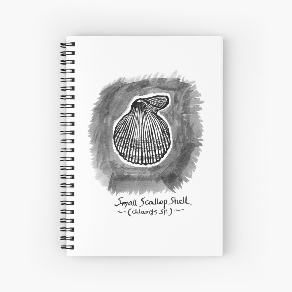 Small Scallop Shell Spiral Notebook