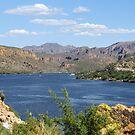 Natural Arizona by kristijacobsen
