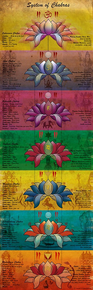 The System of Chakras - Contrastive Style by satyakam