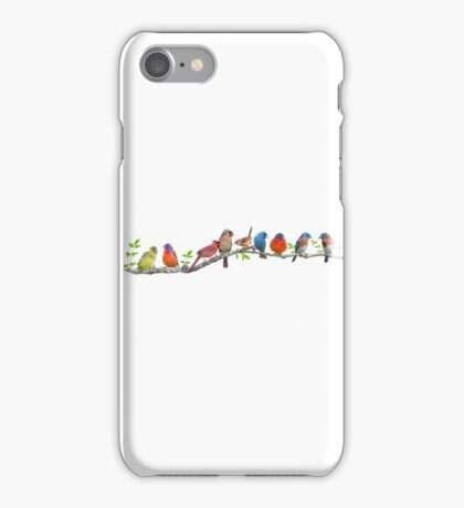 Assorted Songbirds on a Leafy Branch iPhone Case/Skin