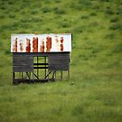 shed by Keith Midson