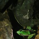 Northern Leopard Frog on Rocks Abstract Impressionism by pjwuebker