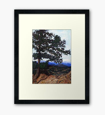 Flagstaff Mountain Tree Framed Print