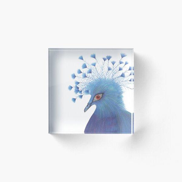 Victoria Crowned Pigeon Acrylic Block