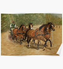 Team Work Four-in-Hand Carriage Driving Poster