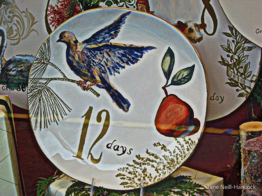 A Partridge In A Pear Tree by Jane Neill-Hancock