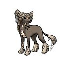 Chinese Crested by Jennifer Stolzer