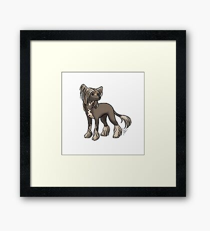 Chinese Crested Framed Print