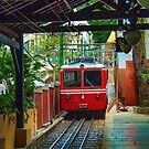 Corcovado Rack Railway at Station  by photograham