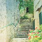 steps to the piazza by Vin  Zzep