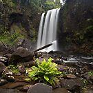 Hopetoun Falls by Alex Wise