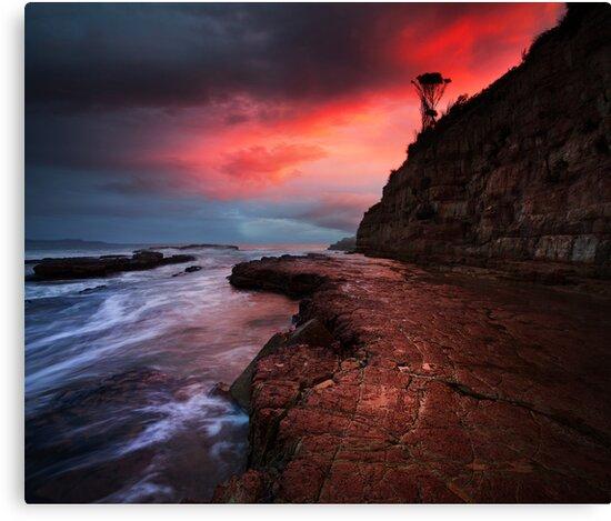 South Arm, Tasmania by Alex Wise