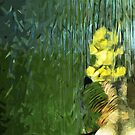 Mother Goose and Goslings Abstract Impressionism by pjwuebker