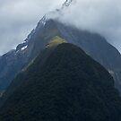 Mitre Peak - Milford Sound  by Barbara Burkhardt