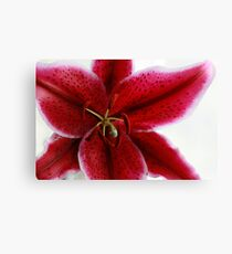 Rich Red Oriental Lily Canvas Print