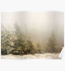 Winter Fog - Great Smoky Mountains  Poster