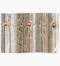 Railroad Wood Texture and Red Bolts Poster