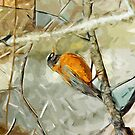 American Robin Hunting Abstract Impressionism by pjwuebker
