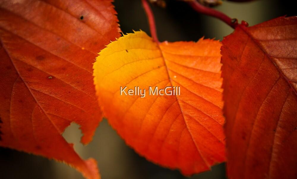 Peachy Leafy by Kelly McGill