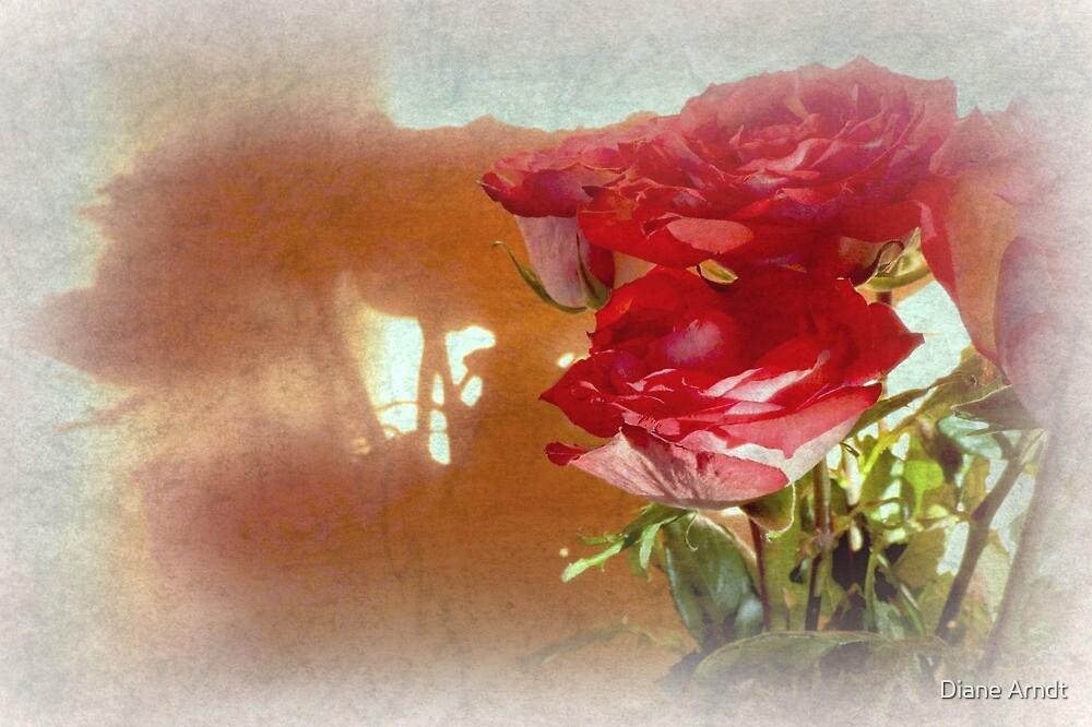 Romantic Shadows by Diane Arndt
