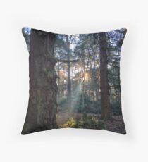 Shining Woodlands Throw Pillow