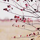 Tree of Hearts by Linda Lees