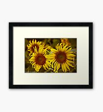 """""""I love you as certain dark things are to be loved,  in secret, between the shadow and the soul.""""  ― Pablo Neruda, 100 Love Sonnets-Got 3 Featured work:) Framed Print"""