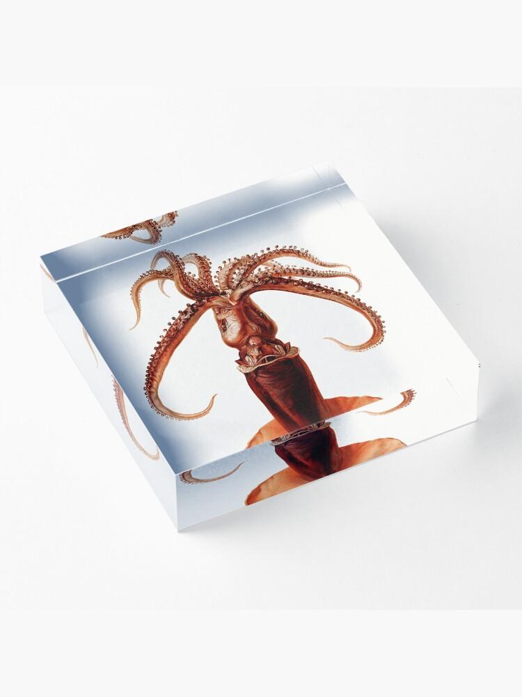 Alternate view of Marine Life- Squid illustration Acrylic Block