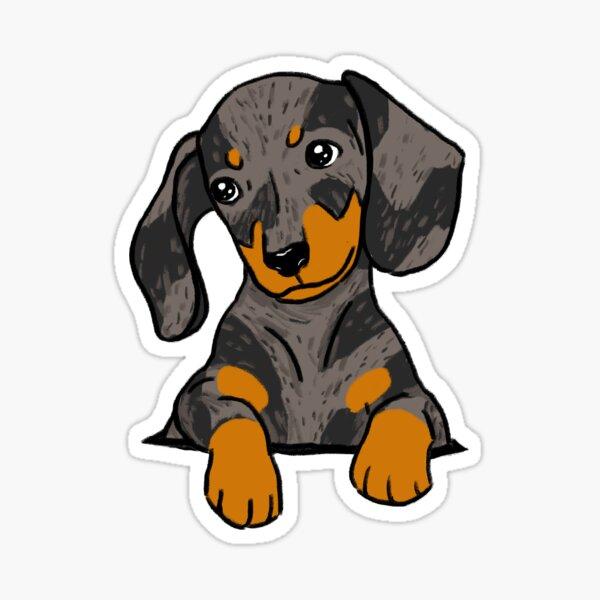 Dapple Dachshund Puppy in Your Pocket Sticker