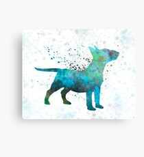 Miniature Bull Terrier in watercolor Canvas Print