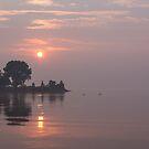 Rose Quartz Sunrise with Swans by Georgia Mizuleva
