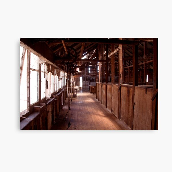 Quiet Shearing Shed Canvas Print