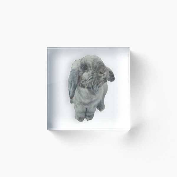 3D mini lop bunny Acrylic Block
