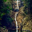 Lower Falls by Tracie Louise