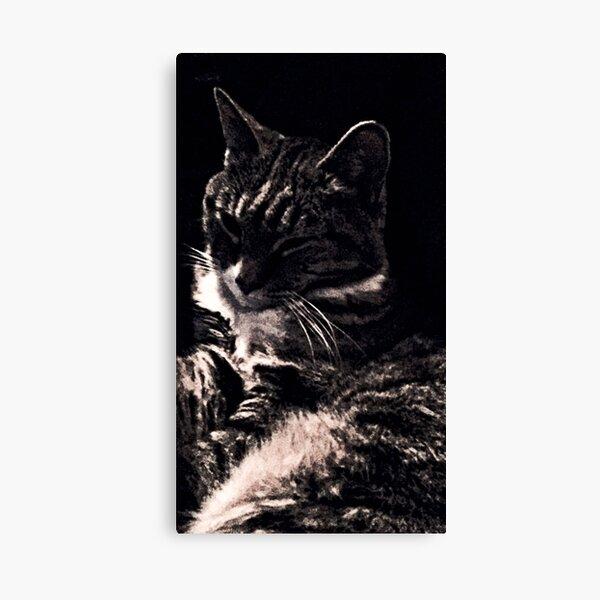 Chic Cat Canvas Print