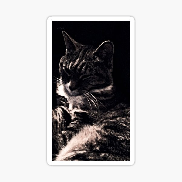 Chic Cat Sticker