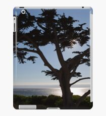 Sihouette of a Tree iPad Case/Skin