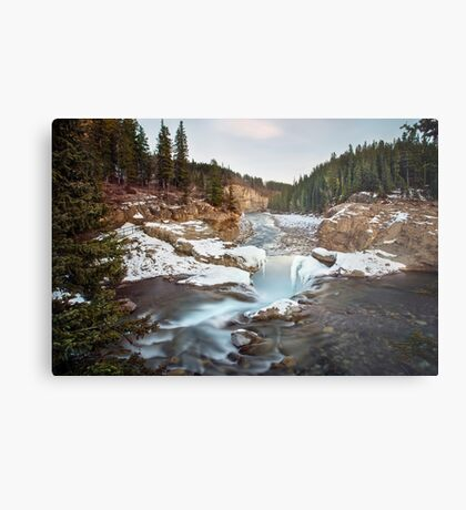 In The Frosty Forests Metal Print