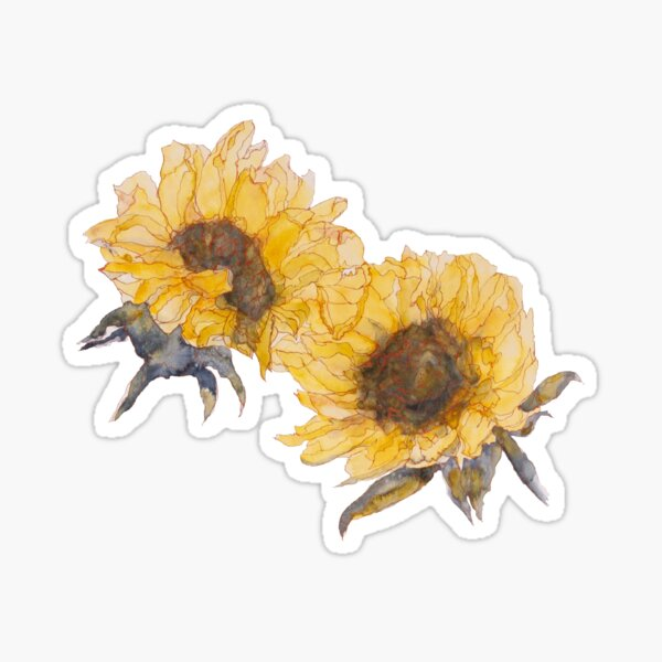 Watercolor Sunflowers Sticker