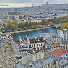 Paris Rooftops from Notre Dame by TigerOPC