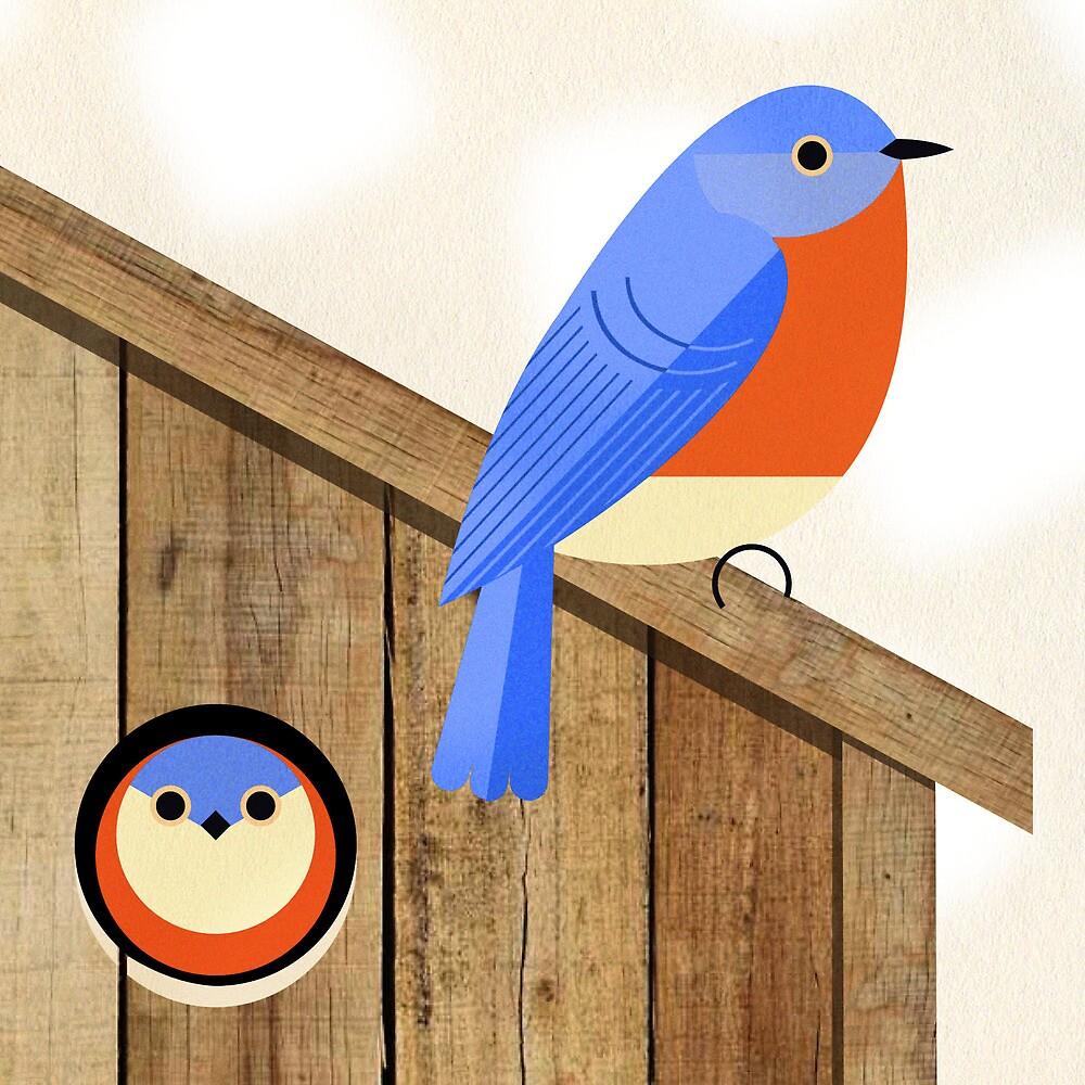 Casas Bluebird - atraer Bluebirds de anidación