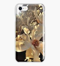 Subtle Decay iPhone Case/Skin