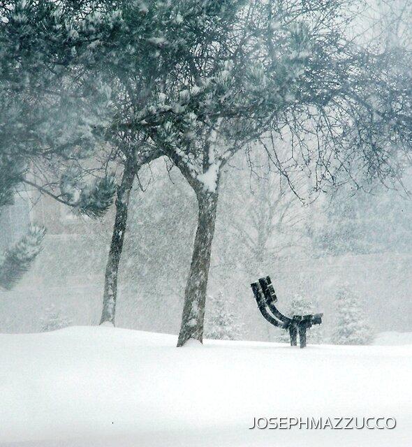 winter poem.. by JOSEPHMAZZUCCO