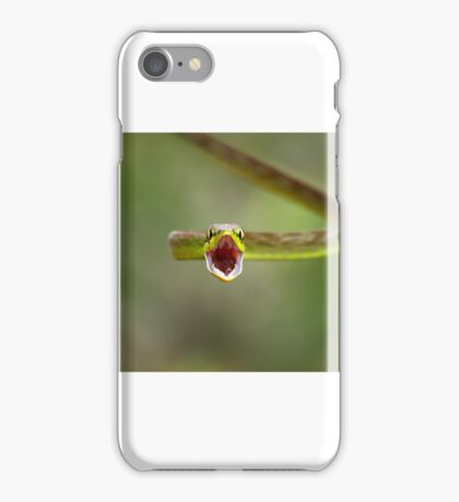 Green parrot snake, Costa Rica iPhone Case/Skin