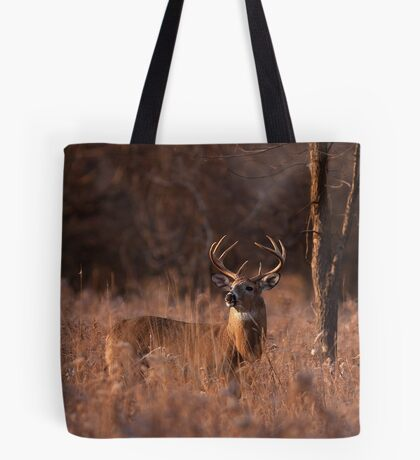 Basking in the light - White-tailed deer Tote Bag