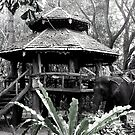 Thai Teahouse by Paige