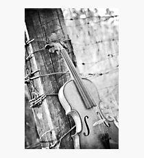Violin Rural Photographic Print