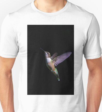 Free - Ruby throated Hummingbird T-Shirt