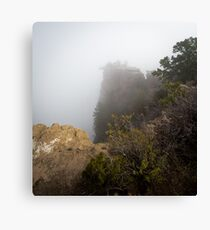 The Rare Grand Canyon covered with puffy fog Canvas Print