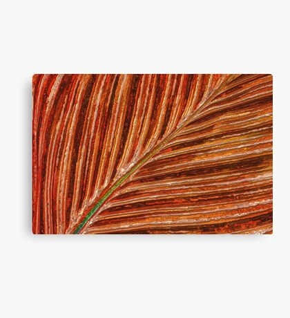 Abstract Canna Leaf Canvas Print